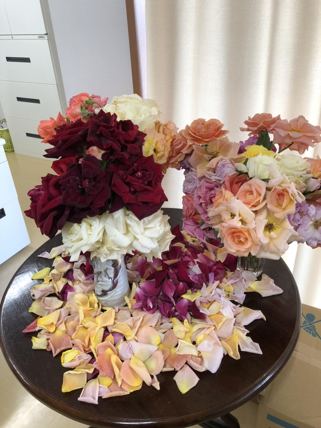 スタッフさんよりバラの花を職場に飾って頂いてます!