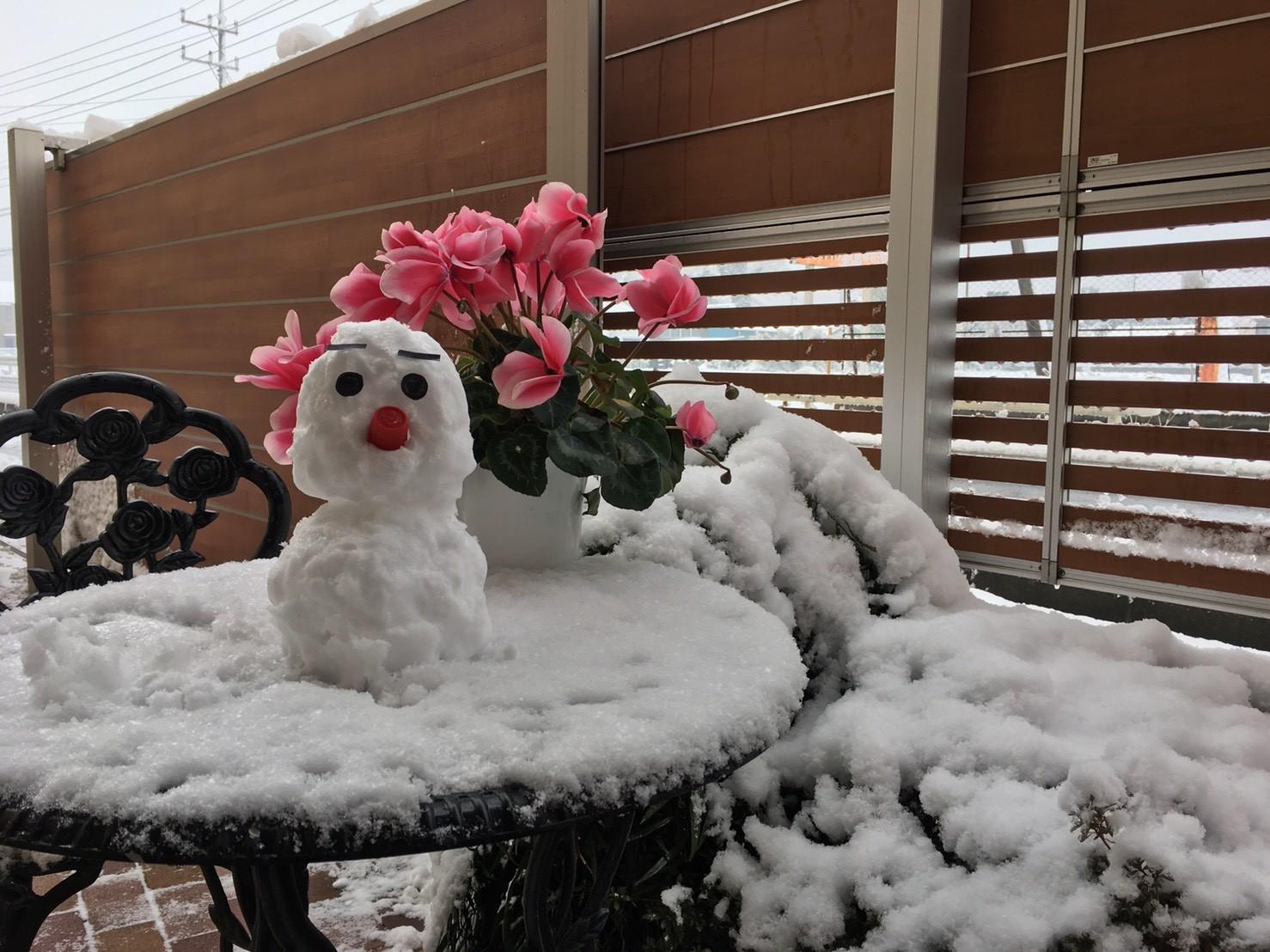 久々の関東の大雪で雪だるまを作りました